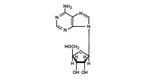 chloroquine untuk lupus