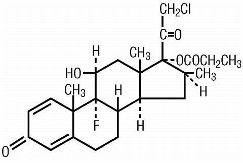 difference between prednisone and prednisolone