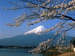 Mount Fuji and lake, Yamanashi prefecture, Japan photo
